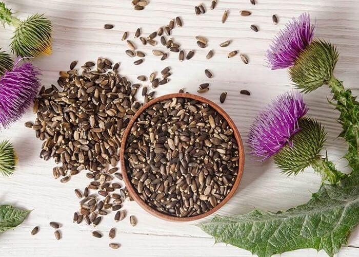 Семена расторопши - применение