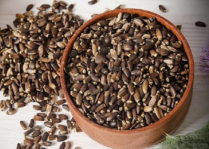Фото семян расторопши