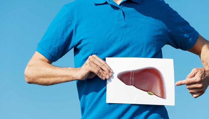 Как принимать расторопшу если болит печень