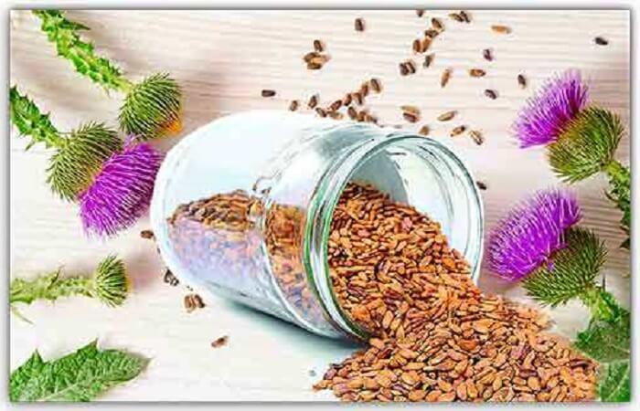 Прием семян расторопши при заболеваниях печени
