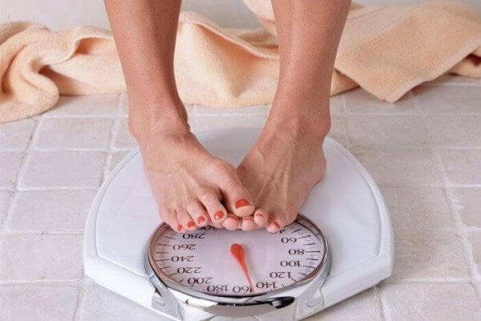 Расторопша при похудении