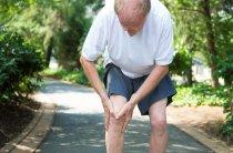 Лечим больные суставы расторопшей–применение при артрите и артрозе