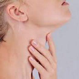 Особенности применения расторопши при заболеваниях щитовидной железы