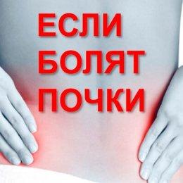 Применение расторопши для лечения заболеваний почек