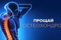 Польза расторопши при лечении остеохондроза